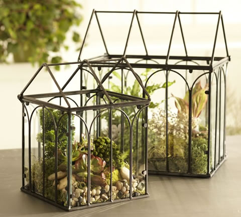decorate your home with terrariums the man cave. Black Bedroom Furniture Sets. Home Design Ideas